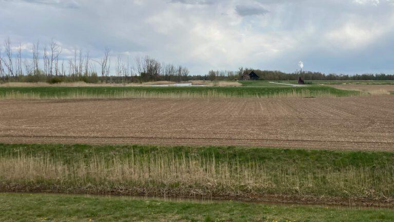 Foto van omgeving en grond Noordwaard