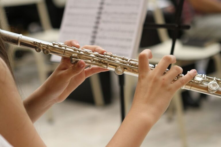 Persoon houdt instrument vast bij muziekorkest